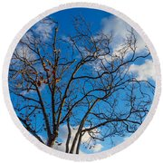 Winter's Tree Round Beach Towel