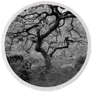 Round Beach Towel featuring the photograph Wisdom Bw by Jonathan Davison