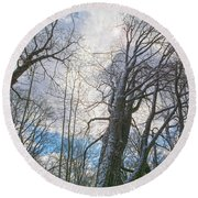 Wisdom Of The Trees Round Beach Towel by Angelo Marcialis