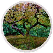Wisdom Tree Round Beach Towel by Jonathan Davison