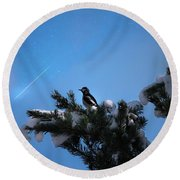 Wish Upon A Shooting Star Round Beach Towel