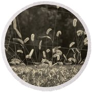 Round Beach Towel featuring the photograph Wispy by Joanne Coyle