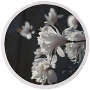 Round Beach Towel featuring the photograph Wipsy Mini Magnolias by Tina M Wenger