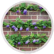 Wisteria Frutescens Longwood Purple Round Beach Towel