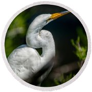 Round Beach Towel featuring the photograph White Egret 2 by Christopher Holmes