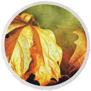 Round Beach Towel featuring the photograph Withered Leaves by Silvia Ganora