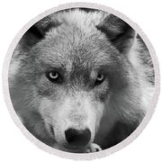 Wolf 1 Round Beach Towel