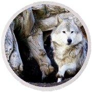 Wolf Den 1 Round Beach Towel