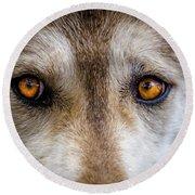 Wolf Eyes Round Beach Towel