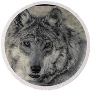 Round Beach Towel featuring the photograph Wolf Painted by Elaine Malott