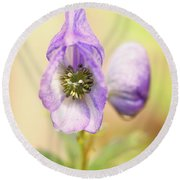 Round Beach Towel featuring the photograph Wolf's Bane Flower With Pistils by Nick Biemans