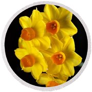 Wonderful Jonquils Round Beach Towel