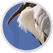Wonderful Wood Stork Round Beach Towel by Carol Groenen