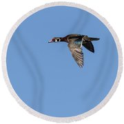 Wood Duck 2017-1 Round Beach Towel by Thomas Young