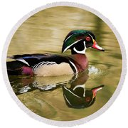 Wood Duck Cruising Round Beach Towel