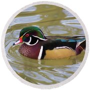 Wood Duck Round Beach Towel by David Stasiak