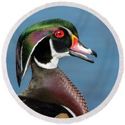 Wood Duck Portrait Round Beach Towel