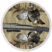 Round Beach Towel featuring the photograph Wood Duck Reflection by Mircea Costina Photography