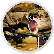 Wood Ducks In Autumn Waters Round Beach Towel