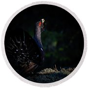 Round Beach Towel featuring the photograph Wood Grouse's Sunbeam by Torbjorn Swenelius