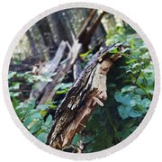 Wood In The Forest Round Beach Towel by Janie Johnson