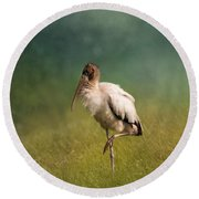 Wood Stork - Balancing Round Beach Towel by Kim Hojnacki