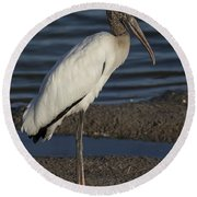 Wood Stork In The Final Light Of Day Round Beach Towel