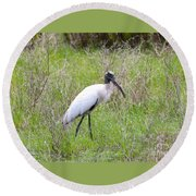 Wood Stork In The Marsh Round Beach Towel by Carol Groenen