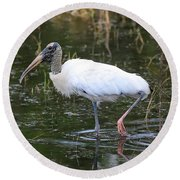 Wood Stork Through The Marsh Round Beach Towel by Carol Groenen