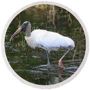 Wood Stork Through The Marsh Round Beach Towel