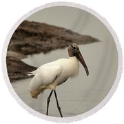 Wood Stork Walking Round Beach Towel by Al Powell Photography USA