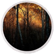 Woodland Illuminated Round Beach Towel