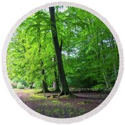 Round Beach Towel featuring the photograph Woodland Path by Anne Kotan