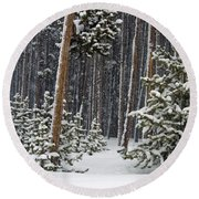Woodland Snowstorm In Yellowstone Round Beach Towel