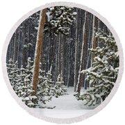 Woodland Snowstorm In Yellowstone Round Beach Towel