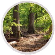 Woodland Walk Round Beach Towel