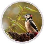 Woodpecker 3 Round Beach Towel