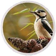 Woodpecker Portrait Round Beach Towel by Heike Hultsch