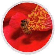 Round Beach Towel featuring the photograph Working Hard 02 by Kevin Chippindall