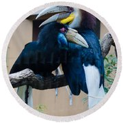 Wreathed Hornbills Round Beach Towel by Donna Brown