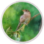 Wren In The Garden Bird Art Round Beach Towel