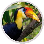 Wrinkled Hornbill Round Beach Towel by Susanne Van Hulst