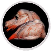 Round Beach Towel featuring the photograph When Two Become As One by Karen Wiles