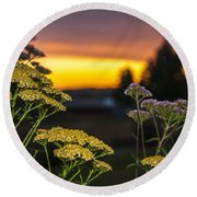 Yarrow At Sunset Round Beach Towel