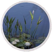 Round Beach Towel featuring the photograph Yawkey Wildlife Reguge Water Lilies With Rare Plant by Suzanne Gaff