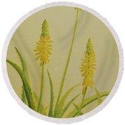 Yellow Aloe Round Beach Towel