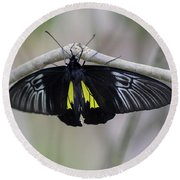 Yellow And Black Butterfly Round Beach Towel