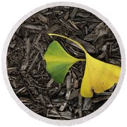 Yellow And Green Gingko Round Beach Towel