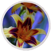Yellow And Orange And Garnet Daylilies 1270 H_2 Round Beach Towel