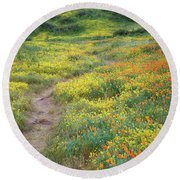 Round Beach Towel featuring the photograph Yellow And Orange Wildflowers Along Trail Near Diamond Lake by Jetson Nguyen